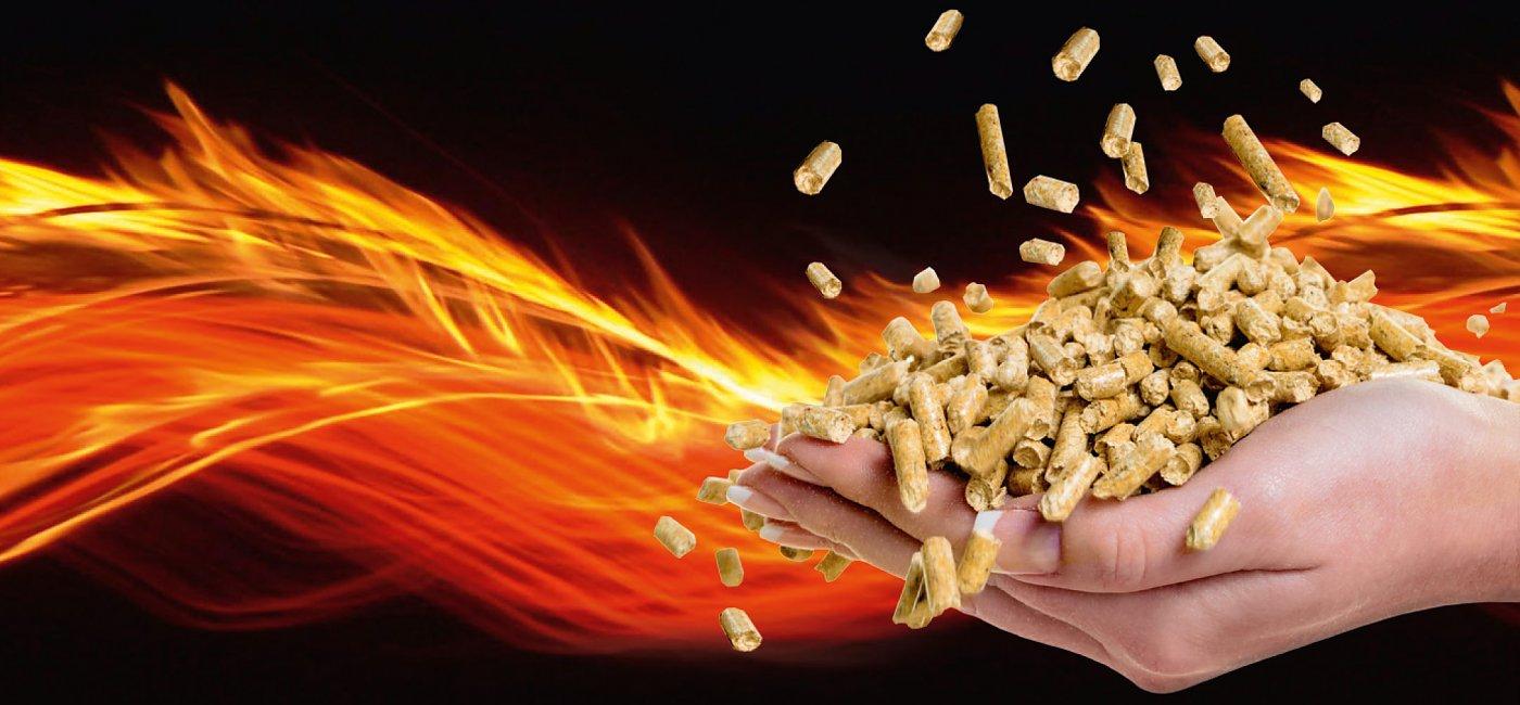 pellet in legno energia che si rinnova federer pellet